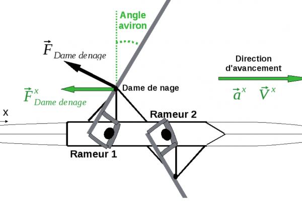 Rameur Barre