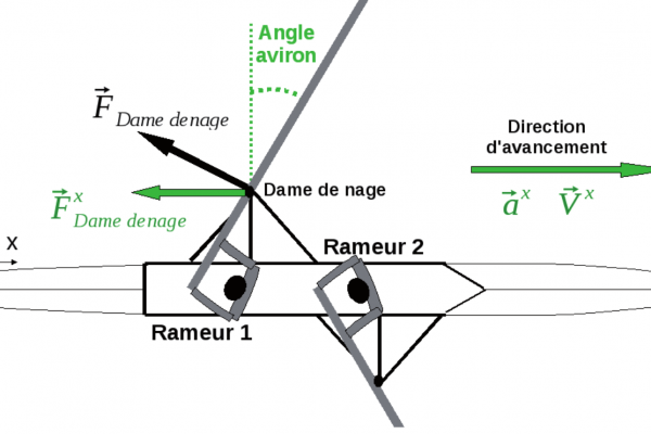 Rameur Frequence